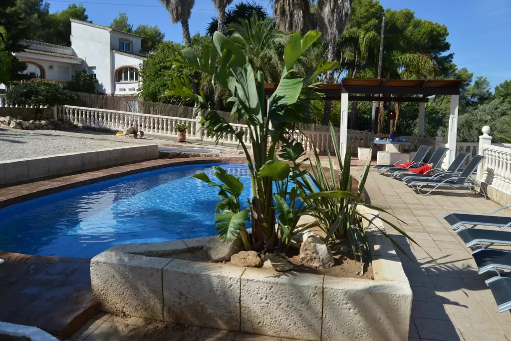 del bruc plant by swimming pool